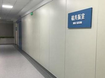 新型无机墙体装饰板_晋州市十方新型保温材料厂